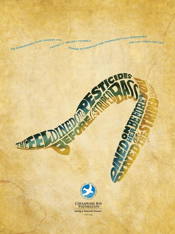 Chesapeake Bay Foundation: Eel
