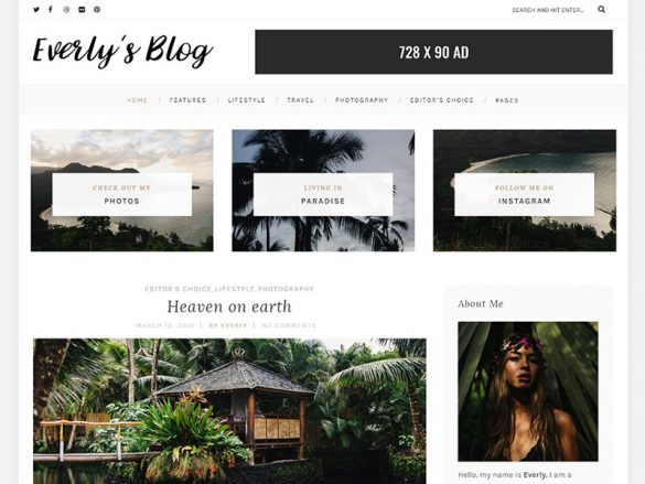 everly-hipster-free-wordpress-blog-featured-theme-800